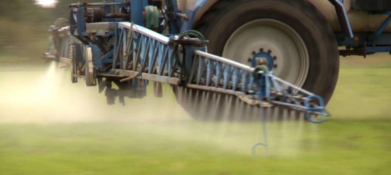 POISONED FIELDS - Glyphosate, an Underrated Risk?