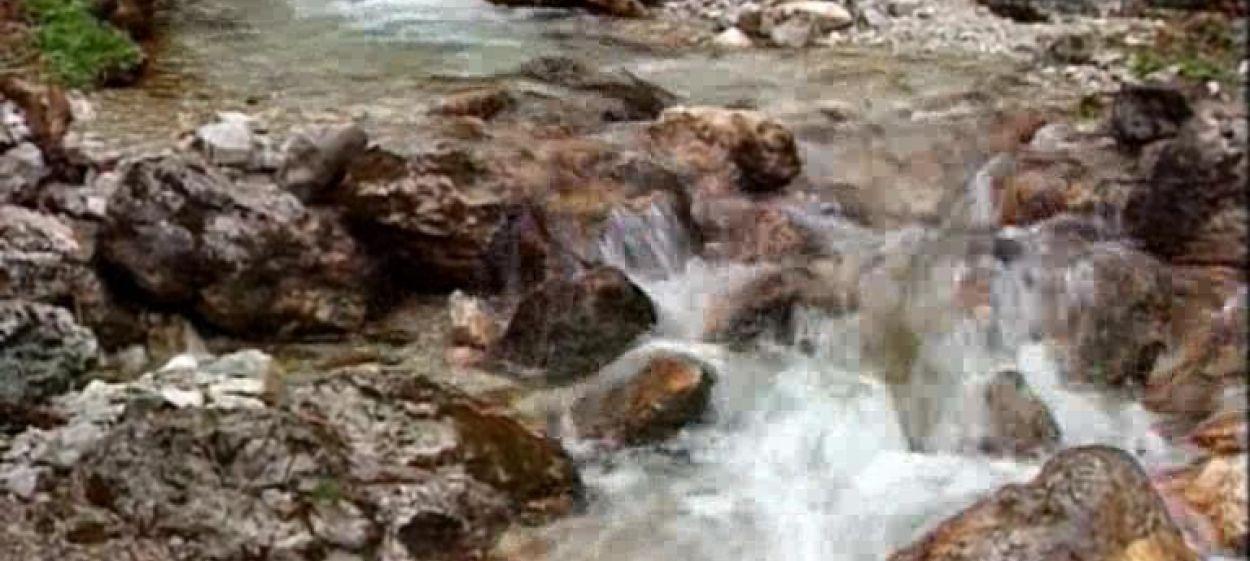 Die Wassermeister