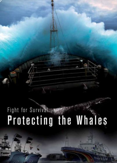 FIGHT FOR SURVIVAL: PROTECTING THE WHALES