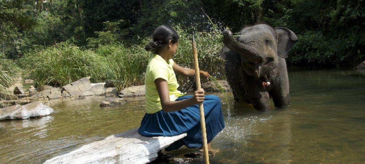 CHANDANI - THE DAUGHTER OF THE ELEPHANT WHISPERER
