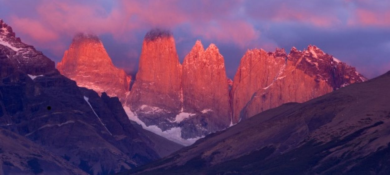 WILD FACES OF THE ANDES