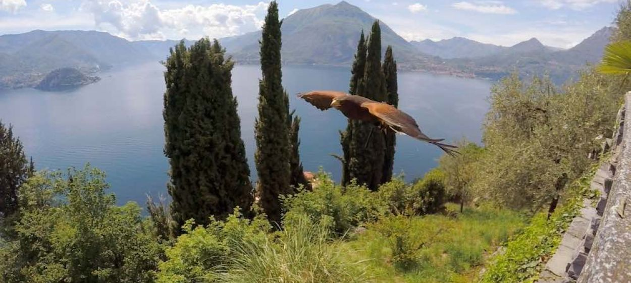 Jewels of the Southern Alps - The Great Lakes of Italy