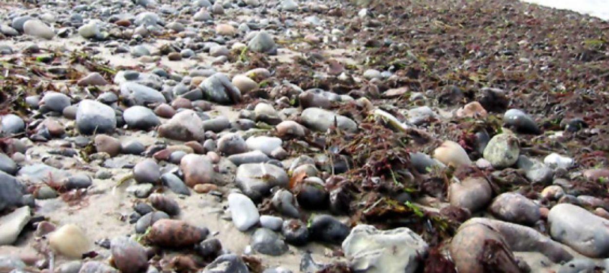 06 Ostseerauschen