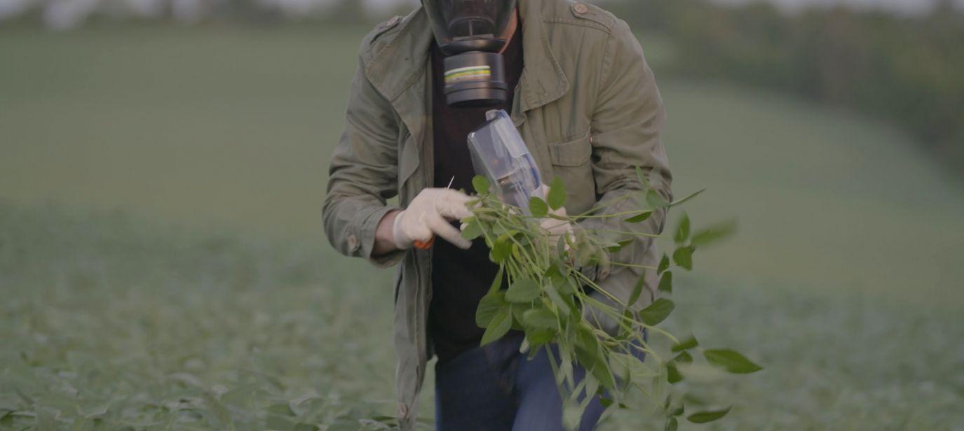 Green Warriors: Paraguay's Poisoned Fields