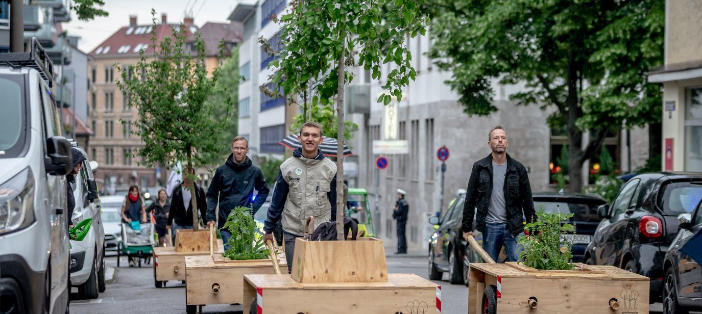 Wanderbaumallee Stuttgart – Ein Baum kommt selten allein