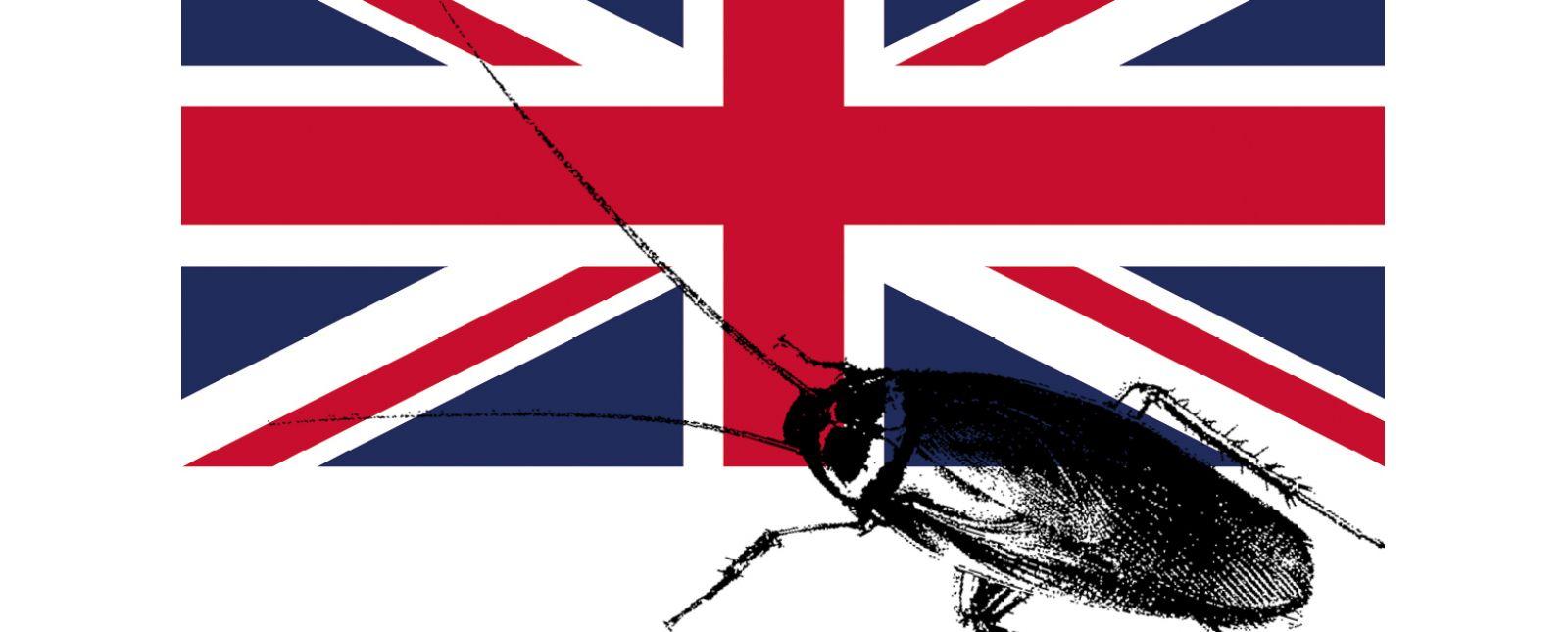 Ian McEwan: Die Kakerlake