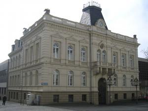2006 Asio otus / wikipedia