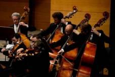 Musiker der Norddeutschen Philharmonie Rostock | Dorit Gätjen